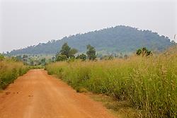 Dirt Road To Chun's Farm