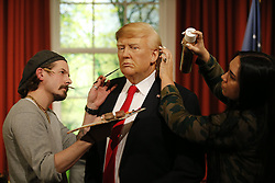 © Licensed to London News Pictures. 18/01/2017. London, UK. A wax figure of the US President-elect Donald Trump is being prepared for unveiling at Madame Tussauds in London ahead of the US Presidential Inauguration on Wednesday, 18 January 2017. Photo credit: Tolga Akmen/LNP