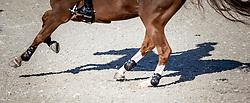 Veniss Pedro (BRA) - Anemoi O Sandor<br /> Class 2 - La Vanguardia Trophy<br /> Furusiyya FEI Nations Cup Jumping Final<br /> CSIO Barcelona 2013<br /> © Dirk Caremans