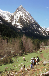 Mountain peak  'Els Encantats'  in Aigues Tortes National Park; Pyrenees; with hikers in foreground,