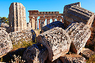 Doric column drums - Greek Dorik Temple ruins of Temple F at Selinunte, Sicily Greek Dorik Temple columns of the ruins of the Temple of Hera, Temple E, Selinunte, Sicily .<br /> <br /> If you prefer to buy from our ALAMY PHOTO LIBRARY  Collection visit : https://www.alamy.com/portfolio/paul-williams-funkystock/selinuntetemple.html<br /> Visit our CLASSICAL WORLD HISTORIC SITES PHOTO COLLECTIONS for more photos to buy as buy as wall art prints https://funkystock.photoshelter.com/gallery-collection/Classical-Era-Historic-Sites-Archaeological-Sites-Pictures-Images/C0000g4bSGiDL9rw