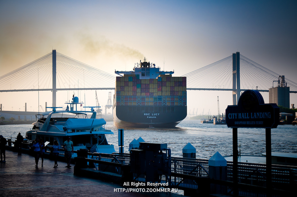 MSC Lucy container ship going under Talmadge Memorial Bridge in Savannah, GA