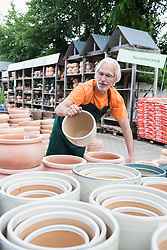 Male gardener examining ceramic pots in greenhouse, Augsburg, Bavaria, Germany