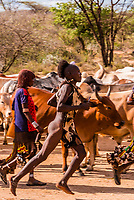 """The Hamar are known for their unique custom of """"bull jumping,"""" which initiates a boy into manhood. The boy must run back and forth (nude) twice across the backs of a row of bulls or castrated steers. Omo Valley, Ethiopia."""