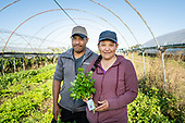 Eloise Organic Farm