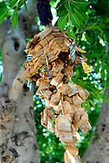 """Public artwork on display as part of the annual Trunk Art Wrap Festival in Bassendean, Western Australia. All artworks are made entirely of recycled industrial or domestic waste materials.<br /> <br /> A """"bunch"""" of used teabags hanging from a tree branch"""