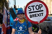 Anti Brexit pro Europe demonstrator with a stop Brexit placard at the protest in Westminster opposite Parliament as MPs debate and vote on amendments to the withdrawal agreement plans on 14th February 2019 in London, England, United Kingdom.