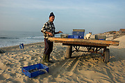 Arte Xávega is a traditional fishing method used by coastal populations in the sandy coast of Centre-North Portugal. With small boats and 3 people on board, fishermen spread the nets several hundred meters long near the beach.