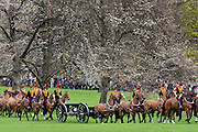 © Licensed to London News Pictures. 22/04/2013. London, UK The King's Troop Royal Horse Artillery fire a 41 Gun Royal Salute from Green Park at midday today 22 April 2013, in honour of Her Majesty Queen Elizabeth II 87th Birthday. Photo credit : Stephen Simpson/LNP