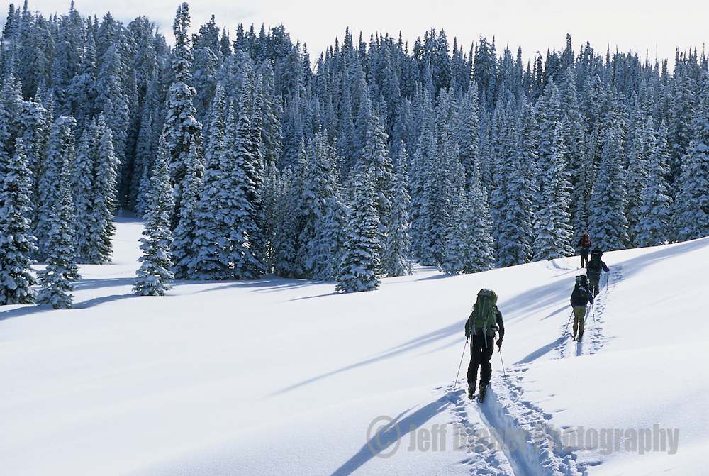 A group of backcountry skiers touring near Baldy Knoll in the southern Tetons, Wyoming.