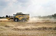 Nederland, Leur, 28-9-2019 Een veld met tarwe, graan wordt door een combine geoogst. Tarweveld, graanveld. Door het droge en warme weer wordt de tarwe vroeg van het land gehaald en is minder groot . Stof.Foto: Flip Franssen