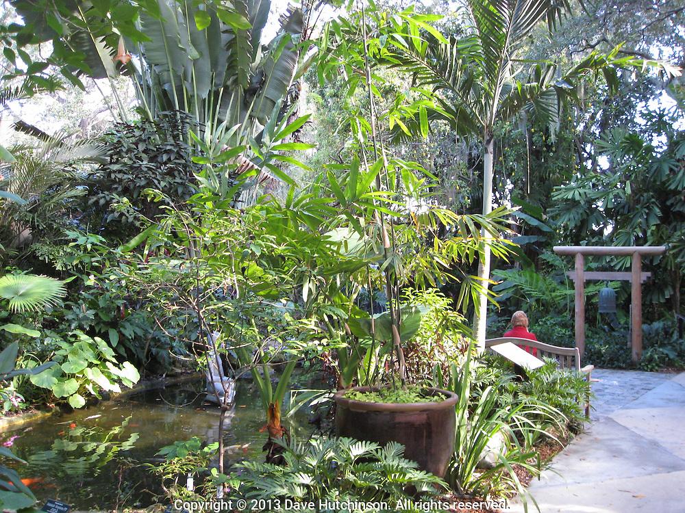 Marie Selby Gardens, Sarasota, FL