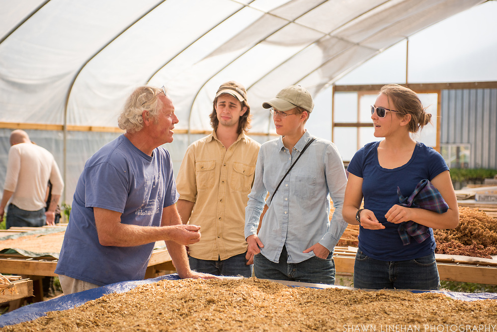 Frank Morton discusses seed saving with Alex Wenger, Julie Dawson, and Claire Luby at his Wild Garden Seed farm in Philomath, OR.