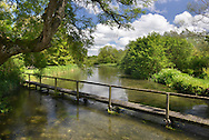 Spring on the River Test near Houghton, Hampshire