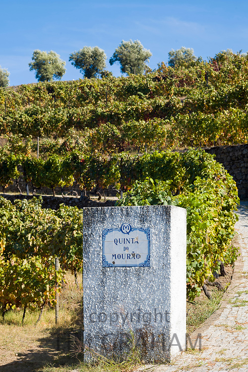 Quinta do Mourao port wine lodge and estate name signpost along the River Douro north of Viseu in Portugal