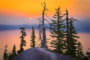Trees at rim of Crater Lake, Oregon, at sunrise