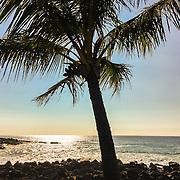 Big Island of Hawaii, January 2016 edited