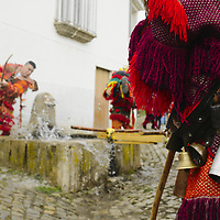 Festa dos Rapazes, or Festa de Santo Estevão (Saint Stephen), a religious festivity with deep roots in pagan Winter Solstice celebrations that takes place at Grijó de Parada, in Trás-Os-Montes region, Portugal.