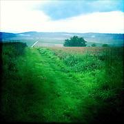 In the fields of Mittel-Gründau, Germany