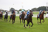 SAM COOKE (9) ridden by Richard Kingscote and trained by Ralph Beckett winning The Elevator Company EBF Novice Auction Stakes over 1m (£15,000)  during the Countryside Raceday, October Finale at York Racecourse, York, United Kingdom on 12 October 2018. Pic Mick Atkins