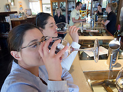 Visitors tasting wine at  winery at Mclaren Vale near Adelaide in South Australia