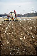 Nederland, Persingen, 21-2-2019 Een loonwerker rijdt met een tractor over het land om mest in de grond, bodem te injecteren. De injecteermachine wordt steeds gevuld vanuit een gesloten laadbak waar vrachtwagens gier in pompen. Vervolgens wordt het dus naar de tractor en op het land uitgereden . Open gieren mag niet meer vanwege de hoge ammoniak uitstoot. A farmer is riding out liquid manure. The stale is injected into the soil , ground because of the environmental rules against ammonia emission. Foto: Flip Franssen