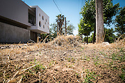 2014/11/18 - Monte Maiz, Argentina: Grass is burned with glyphosate on a sidewalk of Monte Maiz. Glyphosate, an highly toxic herbicide, is commonly used to  kill weeds in sidewalks and parks in Monte Maiz, which can easily contaminate the local population.(Eduardo Leal)