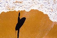 Aerial view of a woman surfer, Shelly Beach, Sunshine Coast, Queensland, Australia