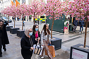 Shoppers in face masks return to the exclusive shopping area on Bond Street passing fake cherry blossom trees as non-essential shops reopen and the national coronavirus lockdown three eases on 15th April 2021 in London, United Kingdom. Now that the roadmap for coming out of the national lockdown has been laid out, this is the first phase of the easing of restrictions, and large numbers of people are out in Londons retail district laden with shopping bags.