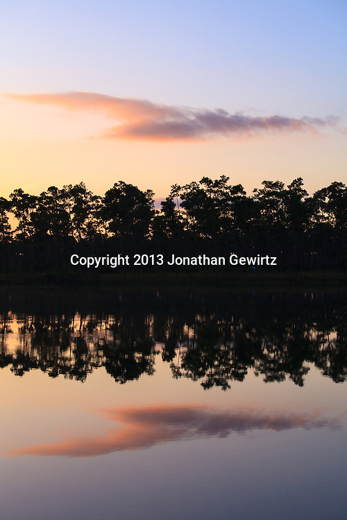 Tree and sky reflections on the tranquil pond at Long Pine Key in Everglades National Park, Florida. WATERMARKS WILL NOT APPEAR ON PRINTS OR LICENSED IMAGES.