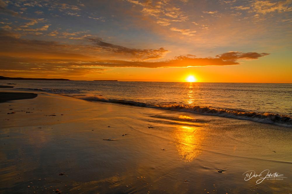 Sand beach at sunrise, Sea Lion Island, West Falkland, Falkland Islands