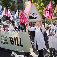 Doctors, other health workers and scientists took part in a large Extinction Rebellion demonstration in London urging the government to take action on climate change.