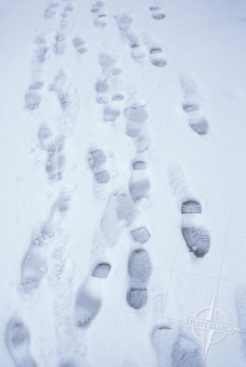 Multiple footprints in snow.