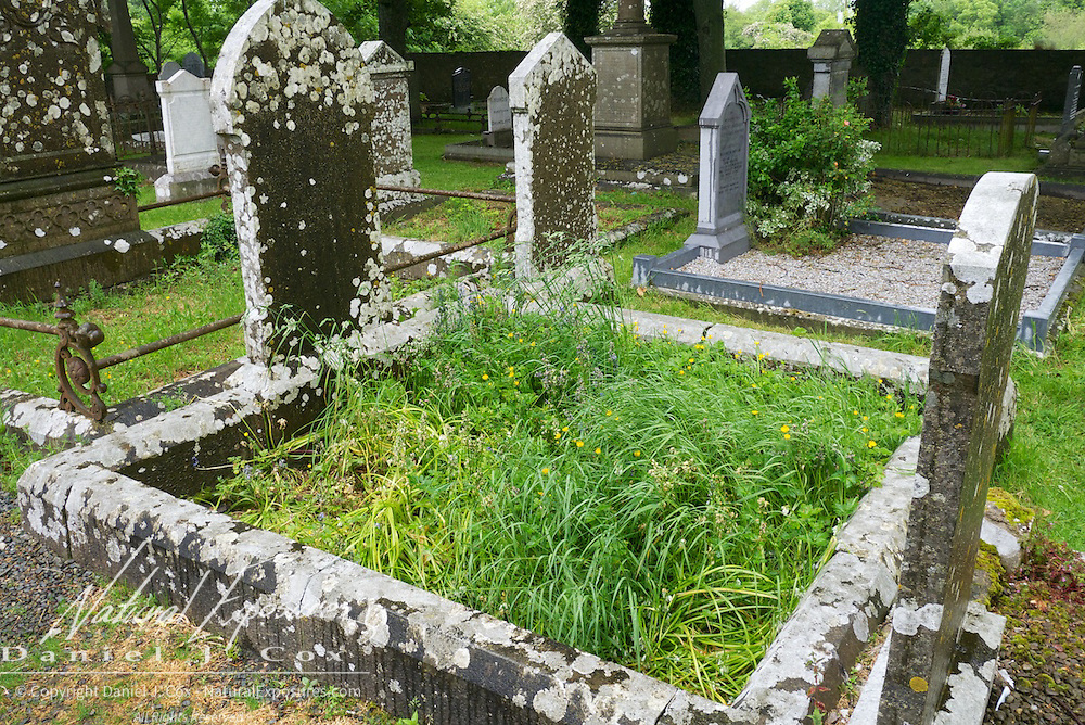 The graveyard at Drumcliffe Church, Ireland.