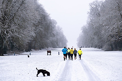 © Licensed to London News Pictures 28/12/2020, Cirencester, UK. Runners and dog walkers in Cirencester Park this morning after over night snow. Photo Credit : Stephen Shepherd/LNP