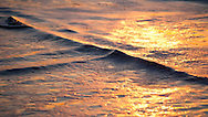 Golden sunset light paints the foam of waves on the beach in vivid colors