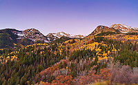 Fall colors dot the mountainside of Utah's Wasatch Mountains near American Fork, Utah.