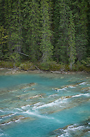 Kicking Horse River, Yoho National Park British Columbia