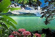 Colorful flowers frame a picturesque view of Kualoa Ridge across Kaneohe Bay in Hawaii