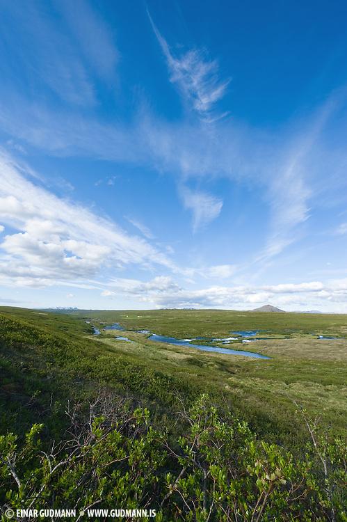 Laxá-river (Norðausturland,Mývatn).