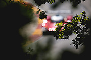 August 5 2018: IMSA Weathertech Continental Tire Road Race Showcase. Mazda Team Joest, Mazda DPi