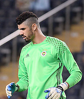 Friendly match between Fenerbahce (TUR) and Panathinaikos (GRE) at Ulker Stadium in Istanbul on July  13 , 2016.<br /> Final Scored: Fenerbahce 2 - Panathinaikos 1<br /> Pictured: Goalkeeper Fabiano Ribeiro of Fenerbahce.