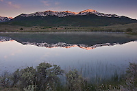 Reflections of 14,433 ft. Mount Elbert of the Sawatch Range in a reservoir in the Upper Arkansas Valley.  Colorado, USA.