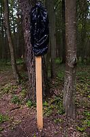 06.06.2016 Bialowieza woj podlaskie Spotkanie lesnikow , naukowcow , organizacji pozarzadowych oraz przedstawicieli mieszkancow z ekspertami IUCN - Miedzynarodowej Unii Ochrony Przyrody . Eksperci IUCN wybrali sie do Puszczy Bialowieskiej , aby sprawdzic , jak wyglada sytuacja z masowymi wycinkami , ktore maja byc prowadzone w ramach walki z gradacja kornika drukarza . Kontrola bedzie przeprowadzona na zlecenie UNESCO N/z zakryta folia tablica zakazujaca wstepu do lasu ze wzgledu na zagrozenie pozarowe i spadajce z suchych swierkow konary . Na prosbe samorzodowcow obawiajacych sie drastycznego spadku przyjzadow turystow zakaz zostal na razie zawieszony fot Michal Kosc / AGENCJA WSCHOD