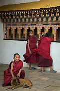 Monks inside Chimmi Lhakhang monestary, Punakha, Bhutan
