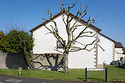 A local house and pruned or dead tree on the street corner of a nineteen-eighties, middle-class housing estate on 21st April 2019, in Nailsea, North Somerset, England