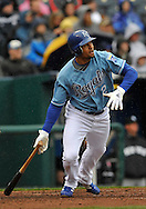 April 12, 2009:  Coco Crisp #2 of the Kansas City Royals triples to center field during a game against the New York Yankees at Kauffman Stadium in Kansas City, Missouri.
