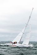 Pleione sailing in the Opera House Cup.
