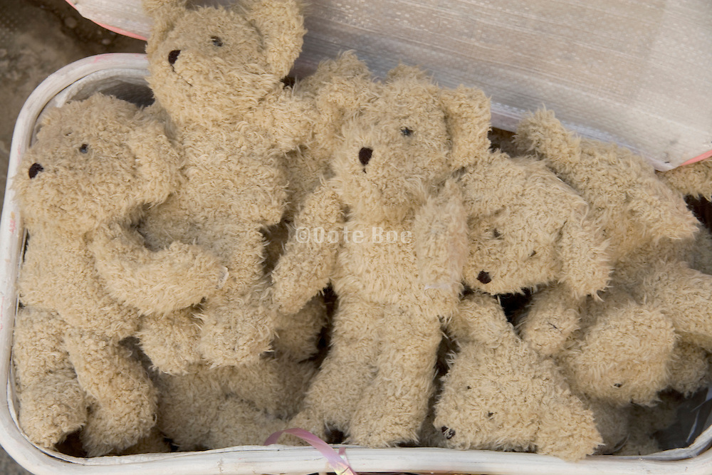 a bundle of identical teddy bears in a basket