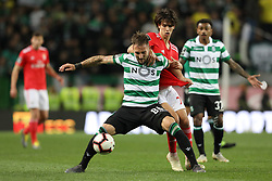February 3, 2019 - Lisbon, PORTUGAL, Portugal - Nemanja Gudelj of Sporting CP (L) vies for the ball with João Félix of SL Benfica (R) during the League NOS 2018/19 footballl match between Sporting CP vs SL Benfica. (Credit Image: © David Martins/SOPA Images via ZUMA Wire)